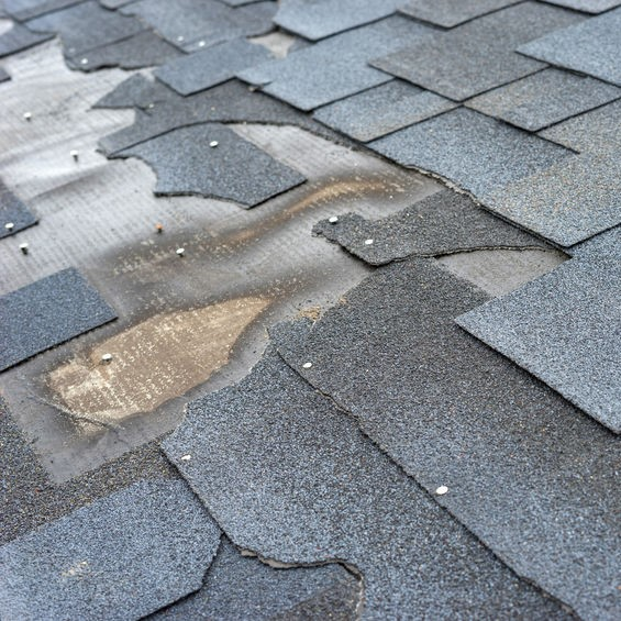 damaged shingles and roof underlayment